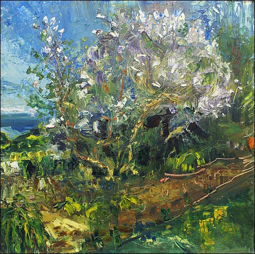 Lilac trees in blossom      oil on board     122x122cms    2011.jpg